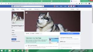facebook screenshot my business