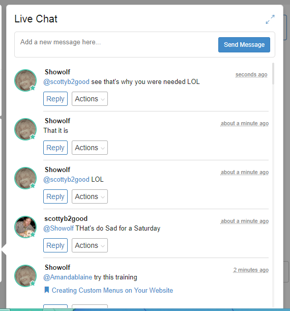 Screenshot Live Chat